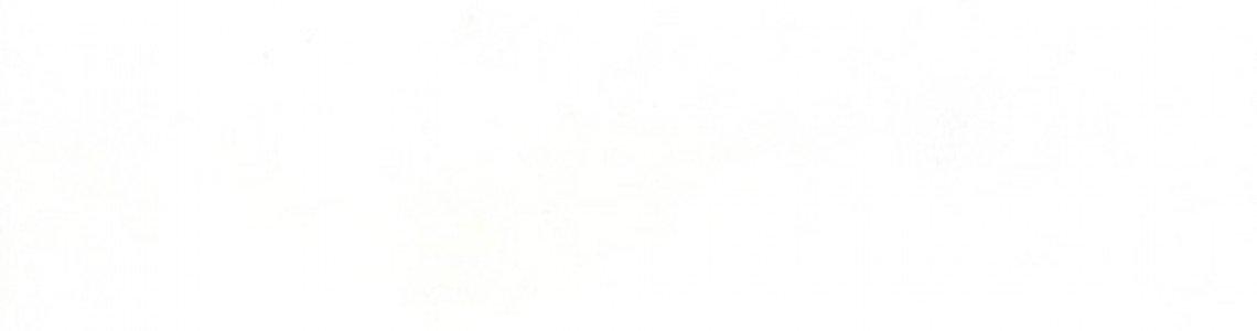1110-Белый